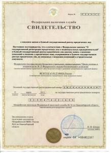 8. СВИДЕТЕЛЬСТВО о внесении изменений в ЕГРЮЛ